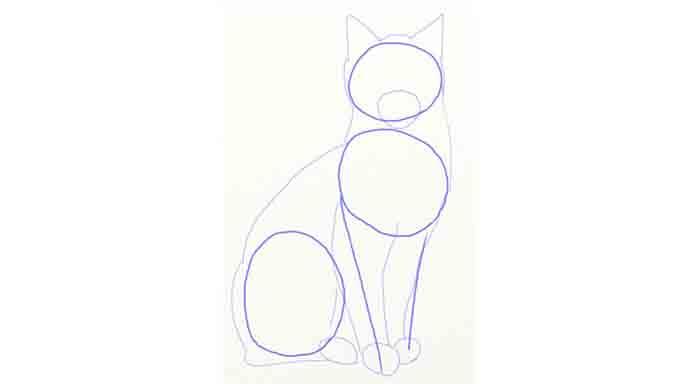 Rysunek kota